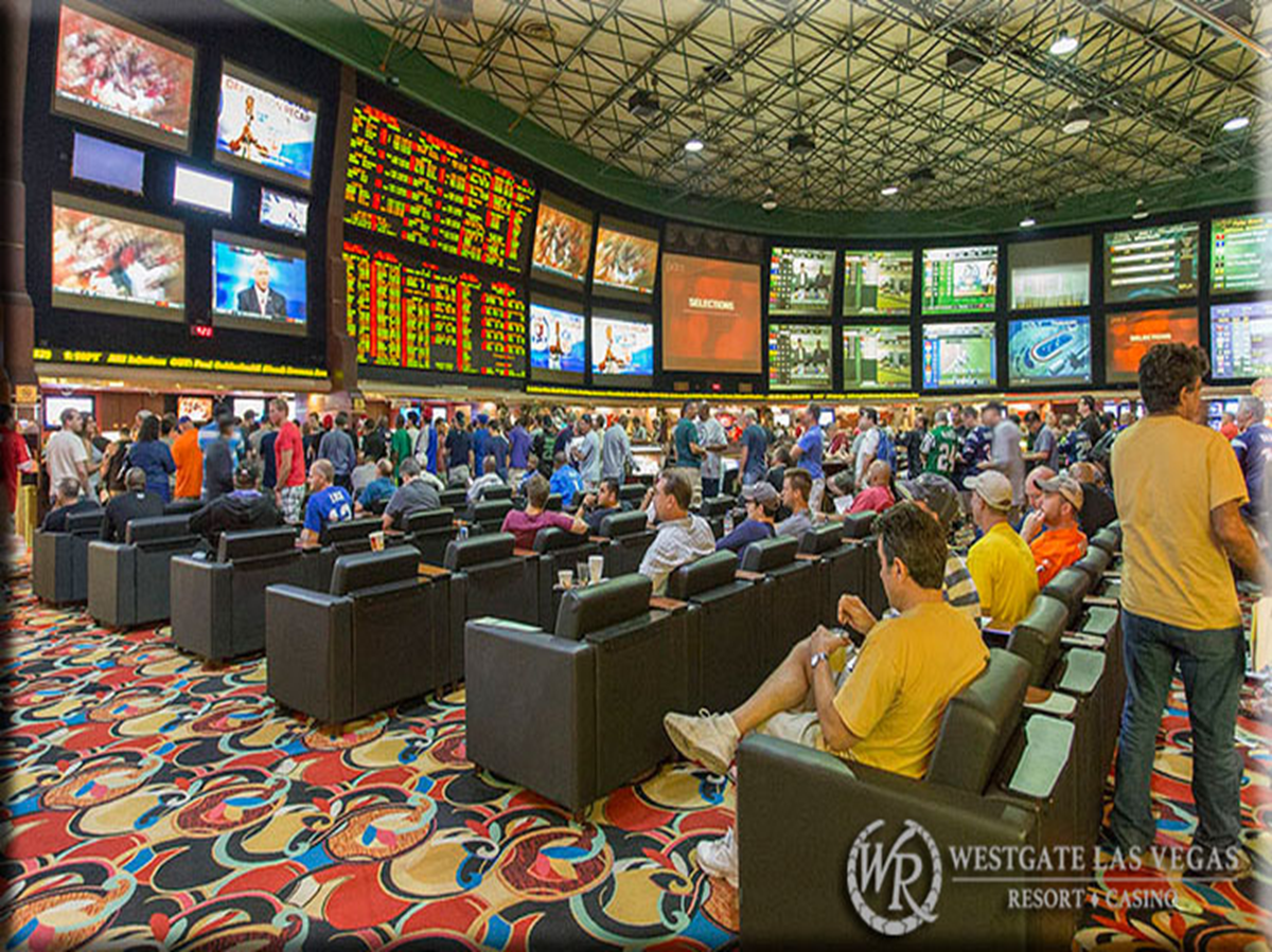 Best Sportsbook Sites for Your Sports Betting Needs